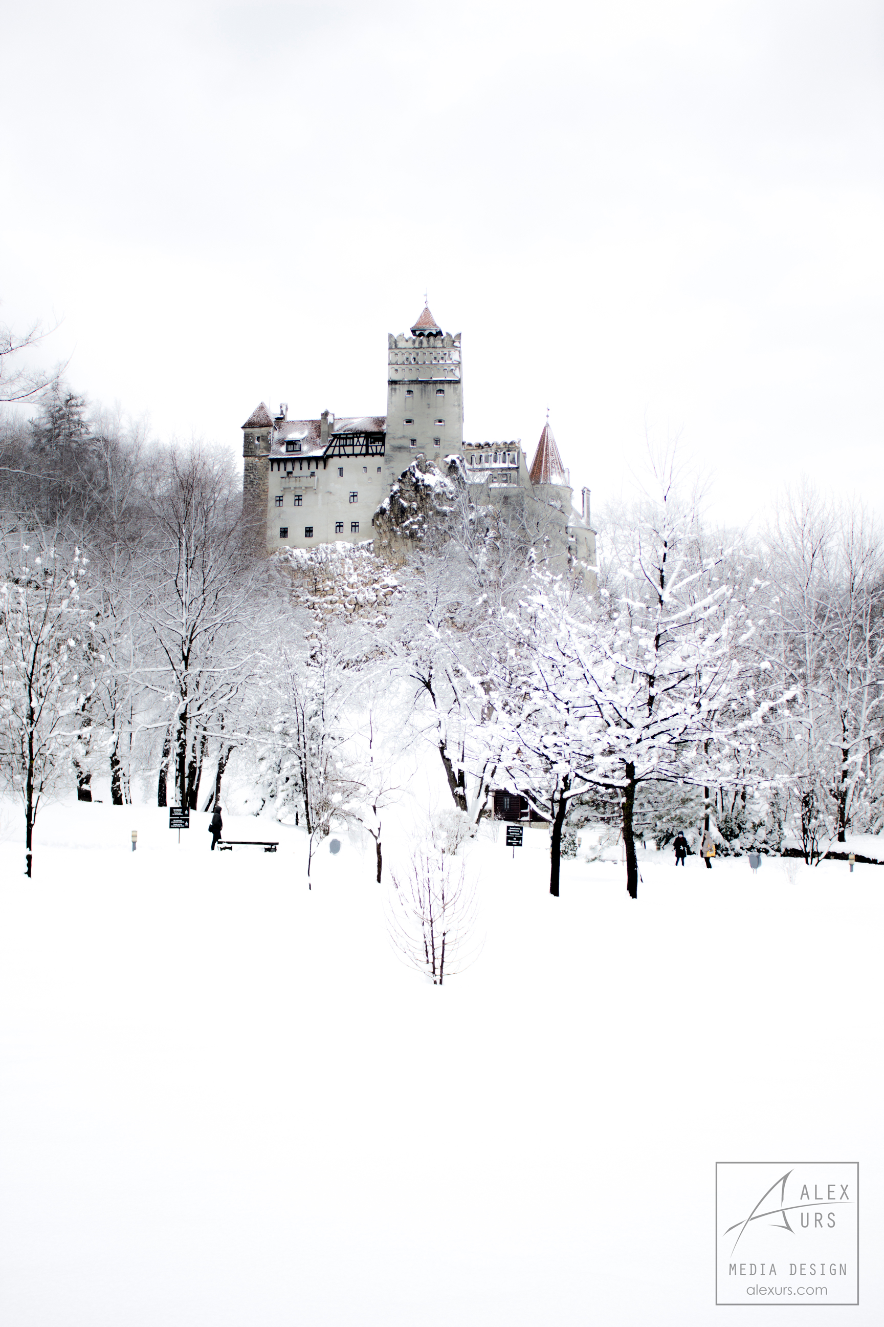 Bran Castle Winter