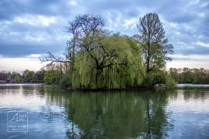 Englischer Garten Reflections