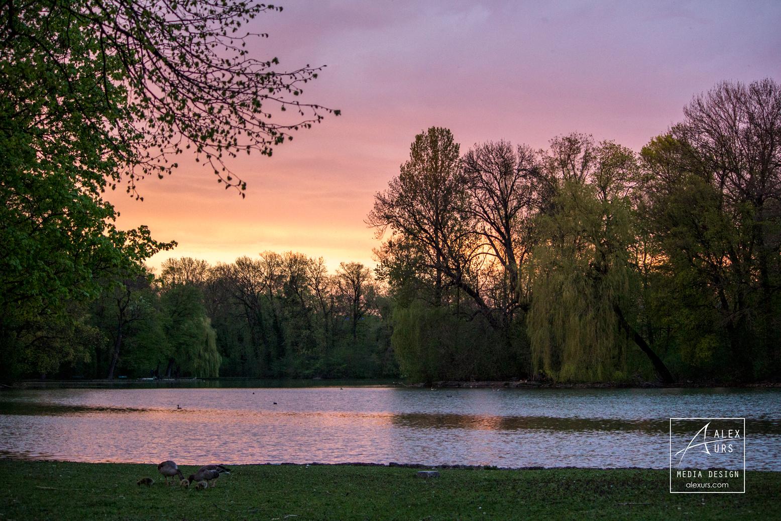 Englischer Garten Sunset