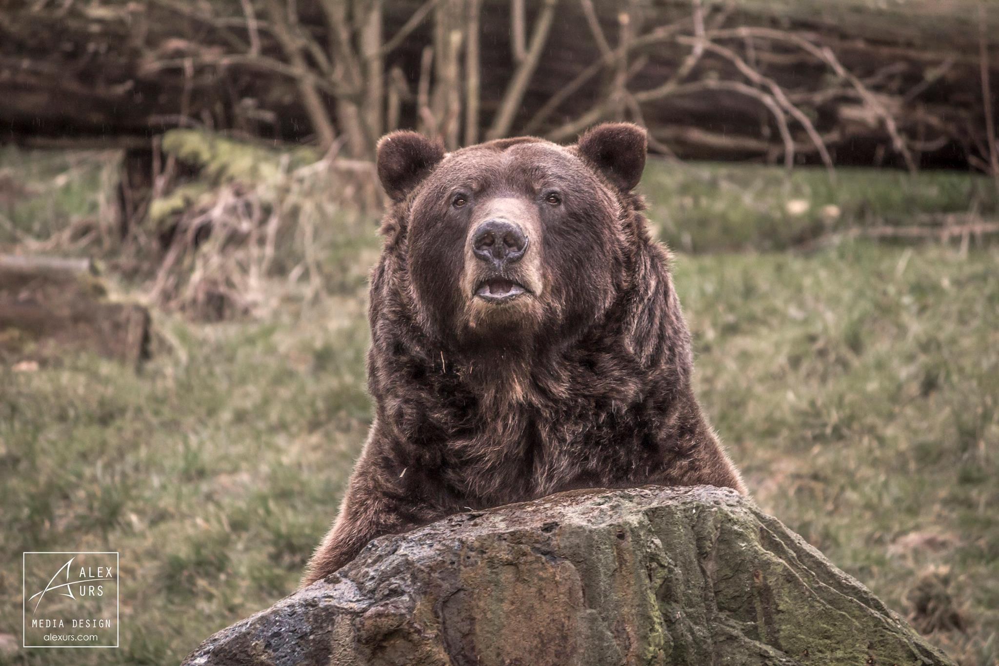 Besuch im Tierpark Bielefeld