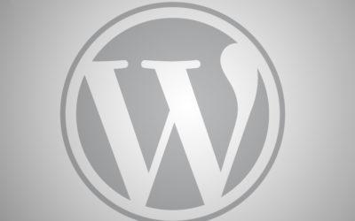 "WordPress-Plugin ""Duplicator"" – ""Requirements: Fail"""